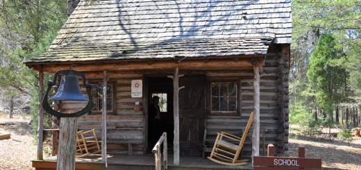 andrew-jackson-state-park